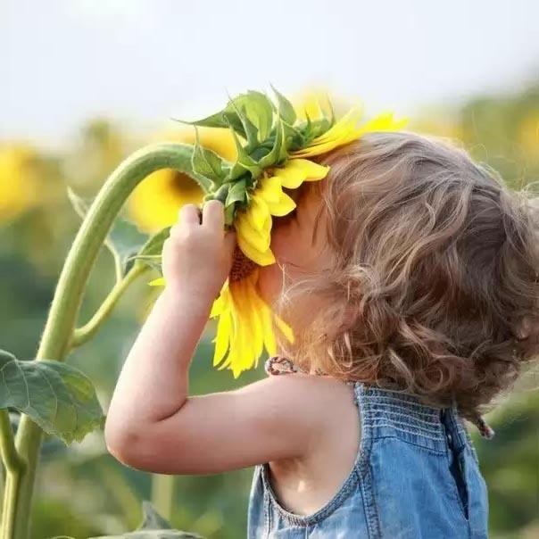 летний отдых детей,  оздоровление детей