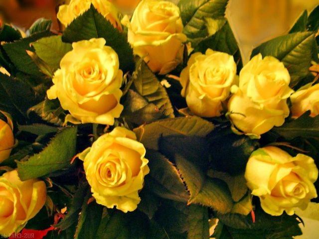 поздравительные открытки с днем рождения, с днем рождения, Сергей, Татьяна