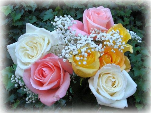 поздравительные открытки с днем рождения, с днем рождения, Надежда, Татьяна, поздравляю