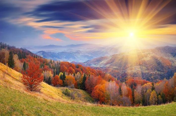 душа, краса, стихи, осень, муксун, красота, грибочки, салют, здравствуй, урожай, ягоды, глазки, очаровашка, припев, куплет, автор, Татьяна, Андра